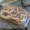 Holzstifte und Verzierungsschnüre